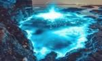 世界上最美的十种自然现象 荧光海滩太美