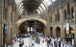 世界十大著名科学博物馆 最稀有的恐龙化石就在英国自然历史博物馆
