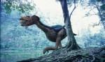 世界十大不能飞的鸟类 排名第一的恐鸟平均身高有3米